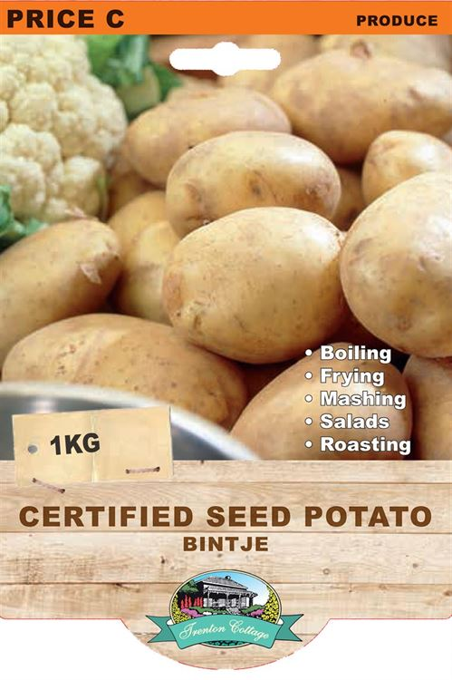 Picture of CERTIFIED SEED POTATO - BINTJE