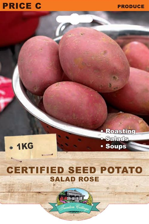 Picture of CERTIFIED SEED POTATO - POTATO SALAD ROSE