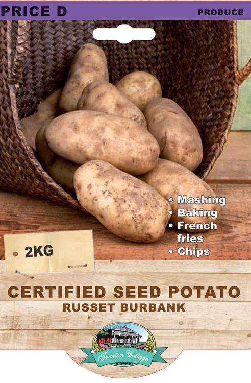 Picture of CERTIFIED SEED POTATO - RUSSET BURBANK