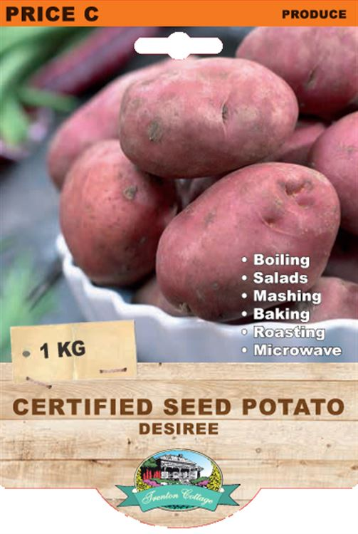 Picture of CERTIFIED SEED POTATO - DESIREE