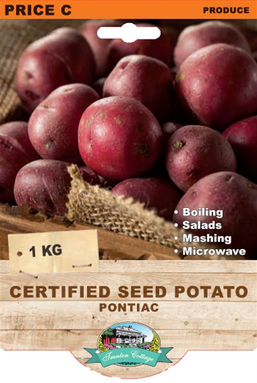 Picture of CERTIFIED SEED POTATO - PONTIAC