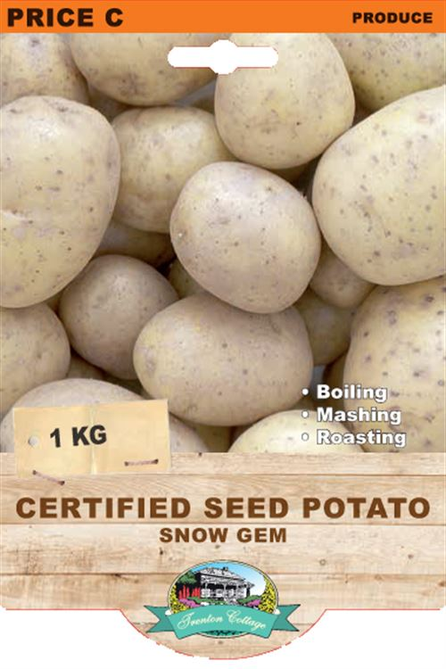 Picture of CERTIFIED SEED POTATO - SNOW GEM