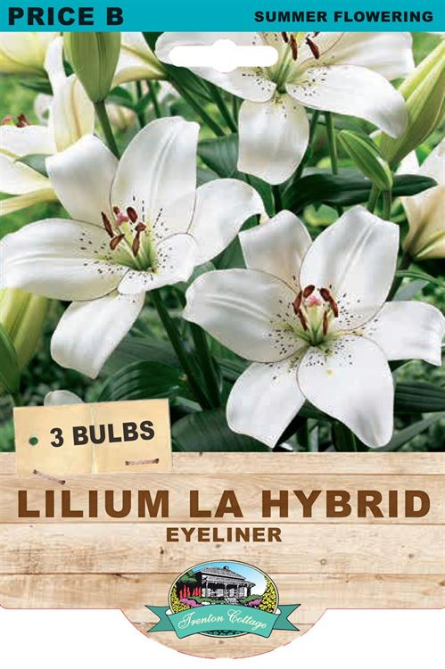Picture of LILIUM LA HYBRID - EYELINER