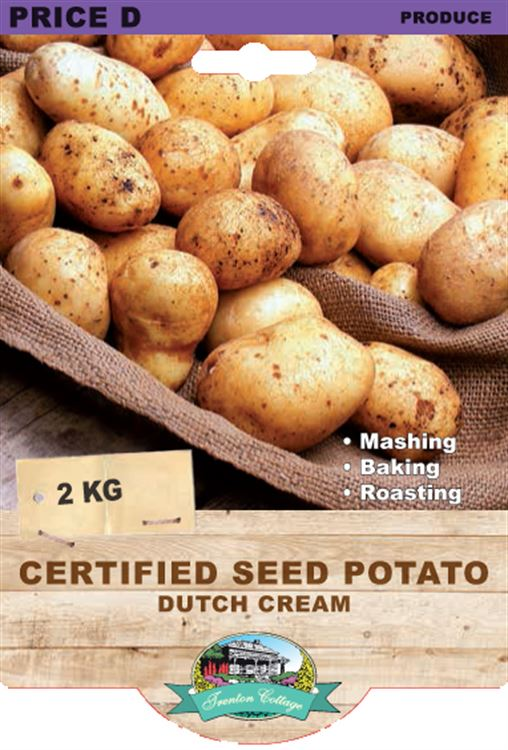 Picture of CERTIFIED SEED POTATO - DUTCH CREAM