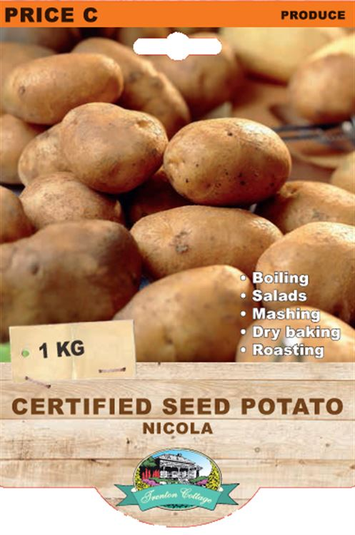 Picture of CERTIFIED SEED POTATO - NICOLA