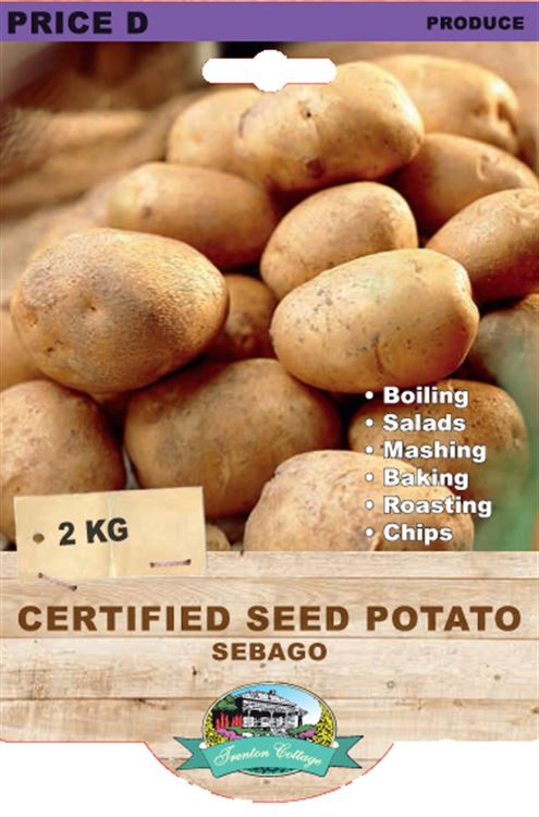 Picture of CERTIFIED SEED POTATO - SEBAGO